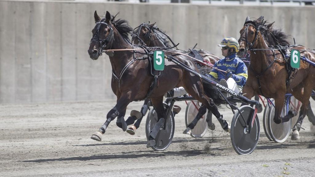 Calvin Classic og Kristian Malmin har en flott vinnersjanse i V65-6/V5-3/DD-2 på Biri fredag. Foto Roger Svalsrød hesteguiden.com