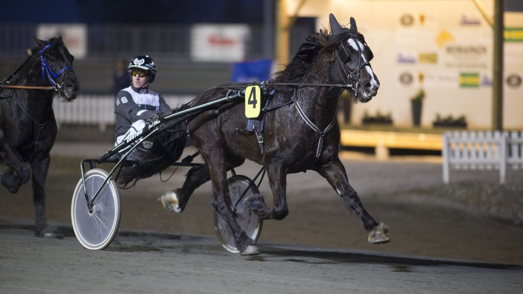 Holene Odin og Espen A. Schem blir klare favoritter i V5-2 på Bjerke torsdag. Foto Roger Svalsrød hesteguiden.com