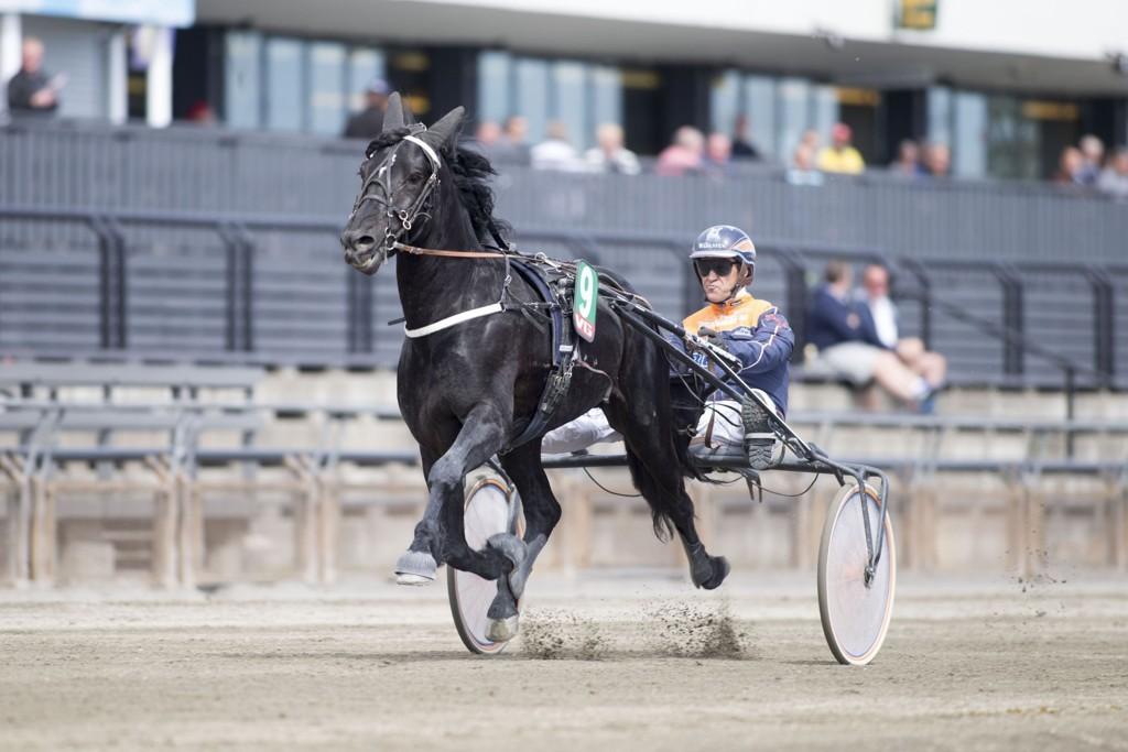 Myhreng Jerker, og Olav Mikkelborg får mange tilhengere i V64-spillet på søndag. foto_Roger Svalsr¿d_hesteguiden.com