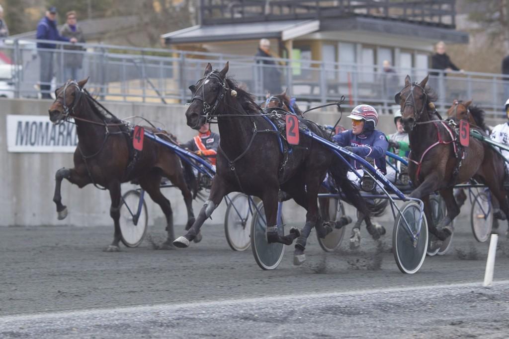 Magnus Teien Gundersen, og Sogni er en av outsiderne i finalen. _foto_Roger Svalsr¿d_hesteguiden.com
