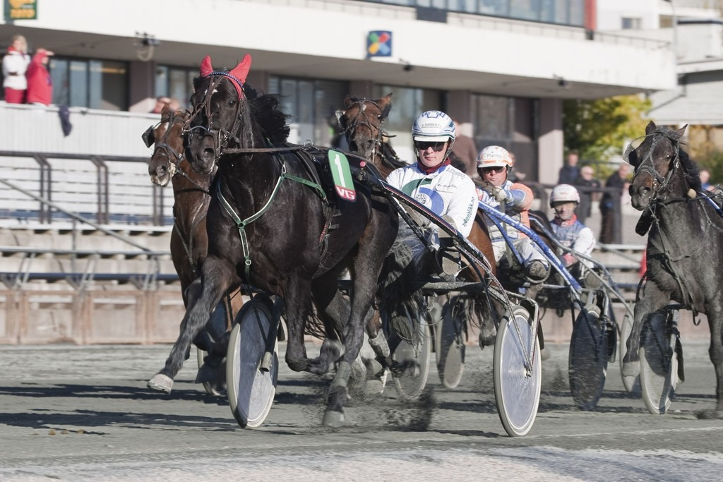 Goldomaster (Her med HC Holm), og Kristine Kvasnes har en spennende oppgave foran seg på tirsdag. _foto_Roger Svalsr¿d_hesteguiden.com