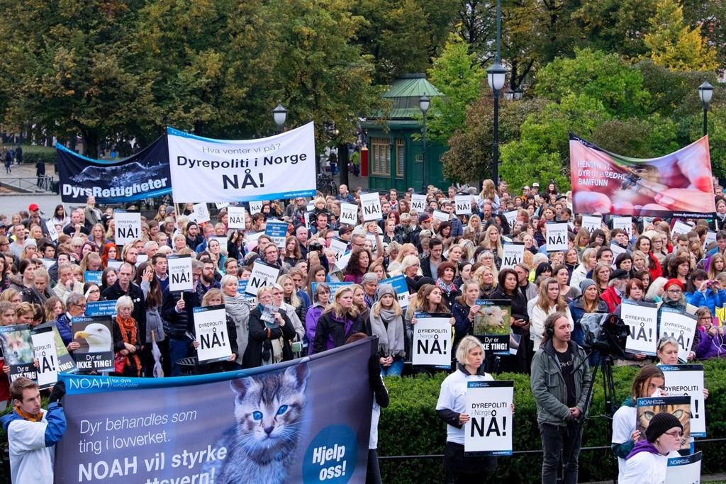 Illustrasjonsfoto: Dyrerettighetsorganisasjonen NOAH fylte 25 år i 2014 og arrangerte markering for dyrepoliti.