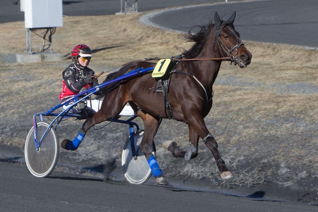 Comeback og kusk Kristine Kvasnes har en riktig oppgave foran seg på tirsdag. Foto: Anders Kongsrud/www.hesteguiden.com.