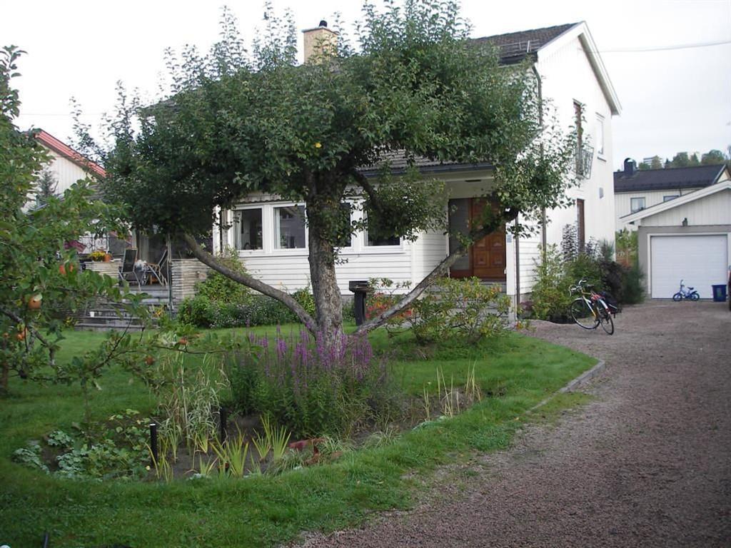 Regnbed et slags blomsterbed som kan ta unna store mengder vann. Bildet er tatt i en hage i Oslo.