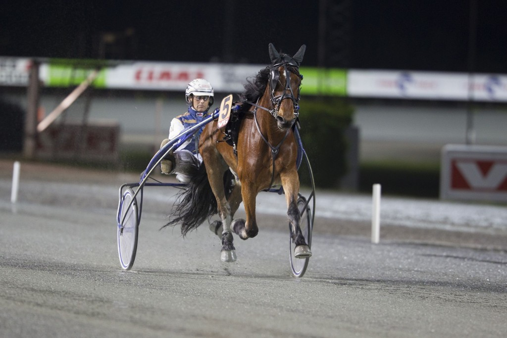 Leif Witasp kjører en av våre bankere på tirsdag. foto_Roger Svalsr¿d_hesteguiden.com