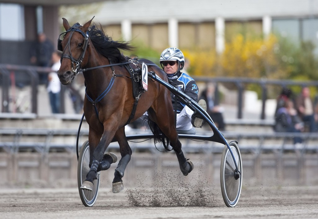 Per Lennartson kjører vår V64-banker tirsdag. foto_Roger Svalsr¿d_hesteguiden.com