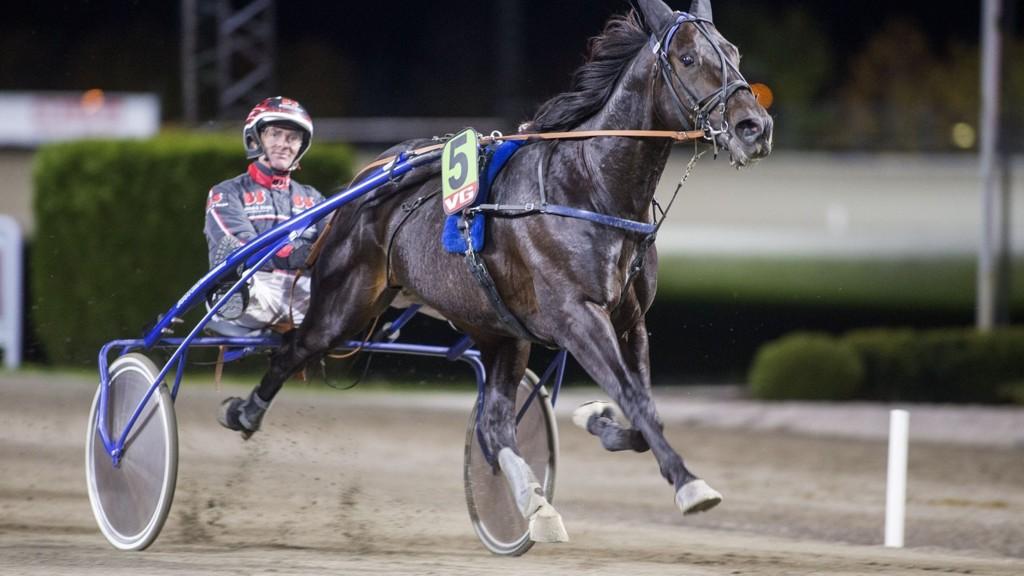 Gunnar Austevoll kjører en meget bra hest i V65-finalen lørdag. foto_Roger Svalsr¿d_hesteguiden.com