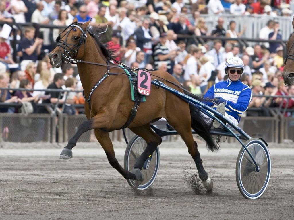 Jorma Kontio kjører en av dagens virkelige luringer. foto_Roger Svalsr¿d_hesteguiden.com