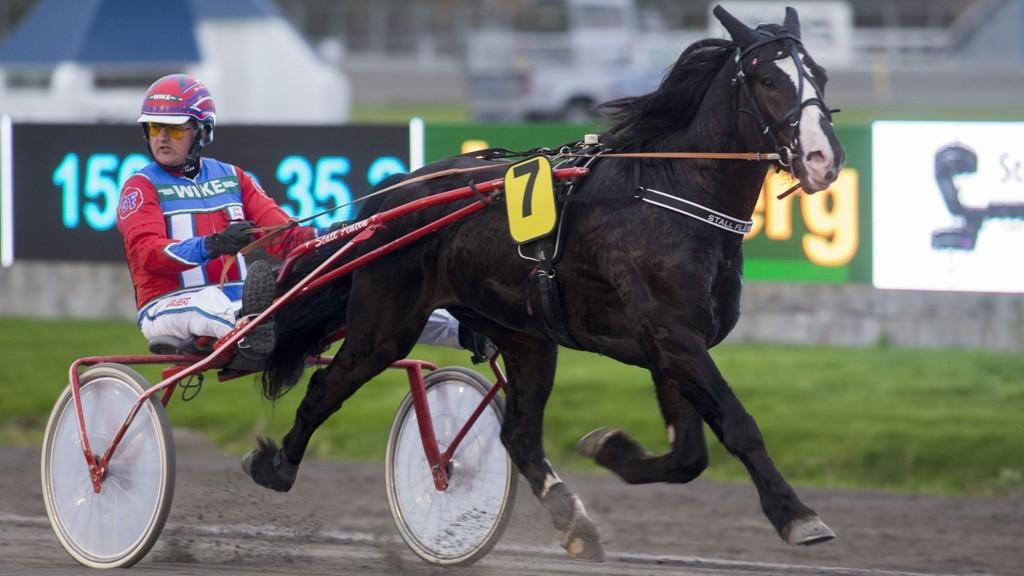 Høvding Jaros og Geir Flåten blir store favoritter i V5-2 på Jarlsberg tirsdag. Foto Roger Svalsrød hesteguiden.com