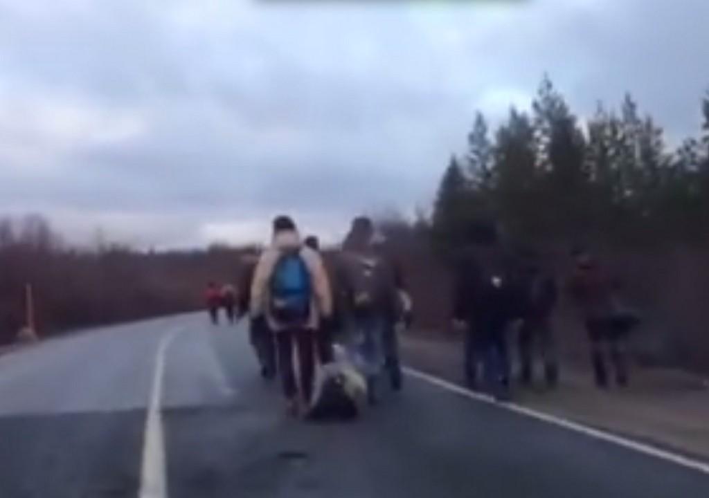En gruppe på totalt 80 emigranter trosser nattefrosten og spaserer mot grenseovergangen Storskog mellom Norge og Russland i slutten av oktober.