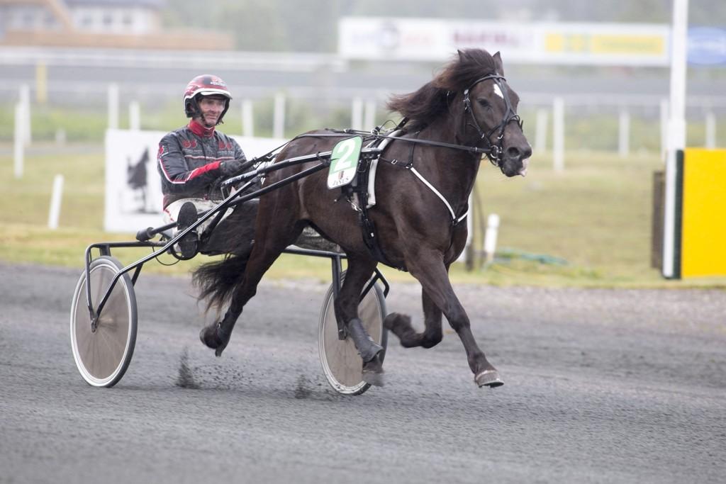 Gunnar Austevoll, og Tangen Jerkila blir en av dagens tyngste V75-favoritter. foto_Roger Svalsr¿d_hesteguiden.com