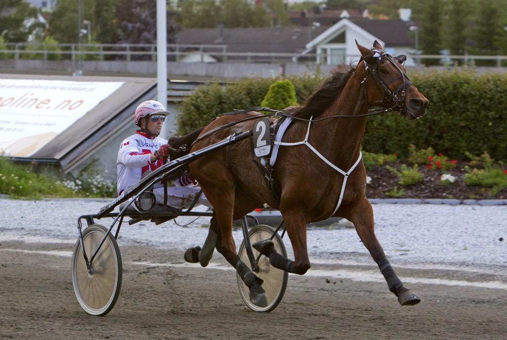 Baritron og Thomas Mjøen har en flott vinnersjanse i V65-5/DD-1 på Leangen mandag. Foto: Morten Skifjeld/Hesteguiden.com