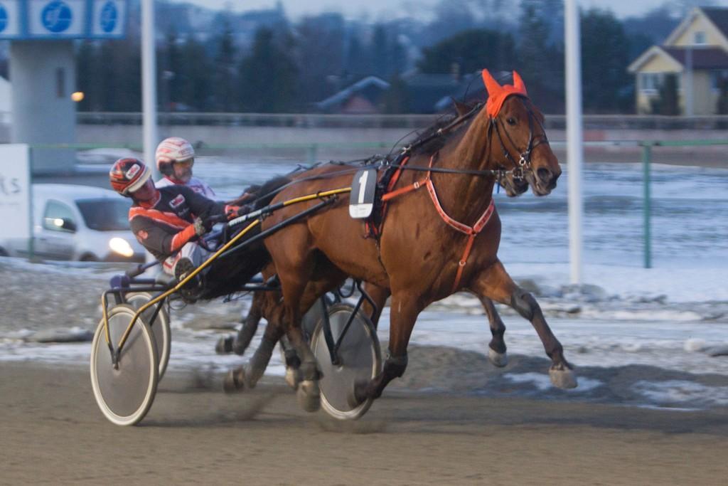Dag-Sveinung Dalen er igjen veldig aktuell under løpene i Harstad. Foto: Anders Kongsrud/www.hesteguiden.com.