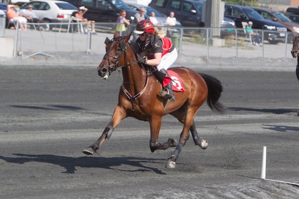 Forick Hall og rytter Kristine Kvasnes har en riktig oppgave foran seg søndag. Foto: Anders Kongsrud/www.hesteguiden.com.