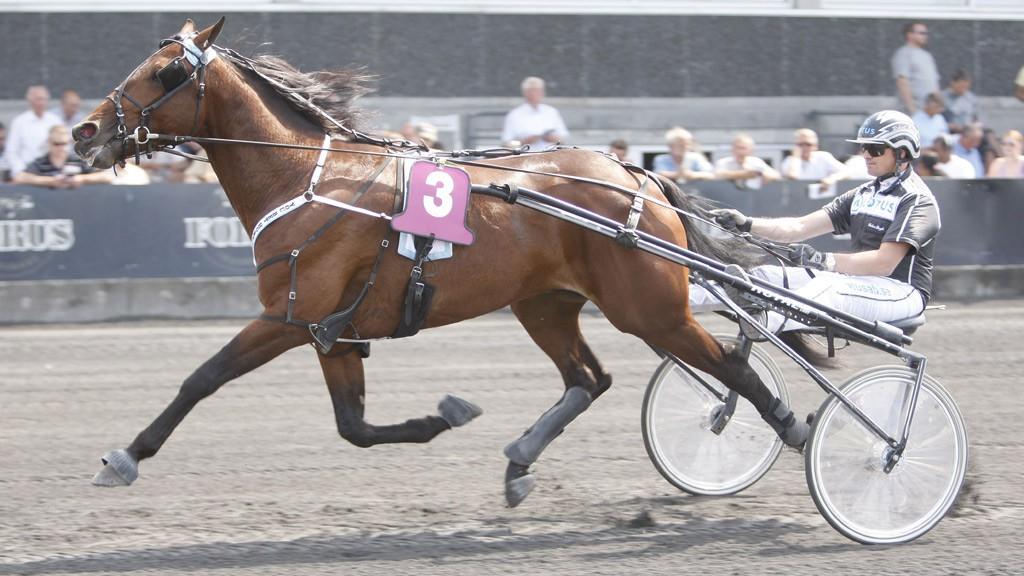 Robert Bergh (her med den tidligere elitehesten You Bet Hornline) kusker Nettavisens V64-banker på Åby torsdag kveld.
