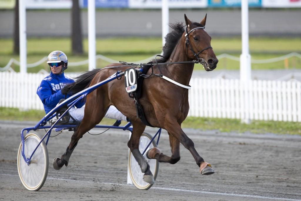 Bjørn Goop (her med stallhesten On Track Piraya på Biri i høst) har en bråte med vinnersjanser på Färjestad mandag kveld. Foto: Roger Svalsrød: Hesteguiden.com