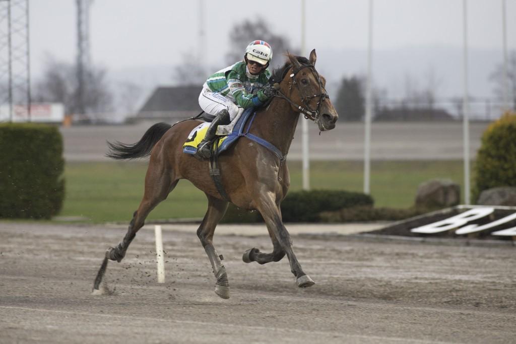 Dyktige Martine Finsand er rytter på vår banker tirsdag. foto_Roger Svalsr¿d_hesteguiden.com