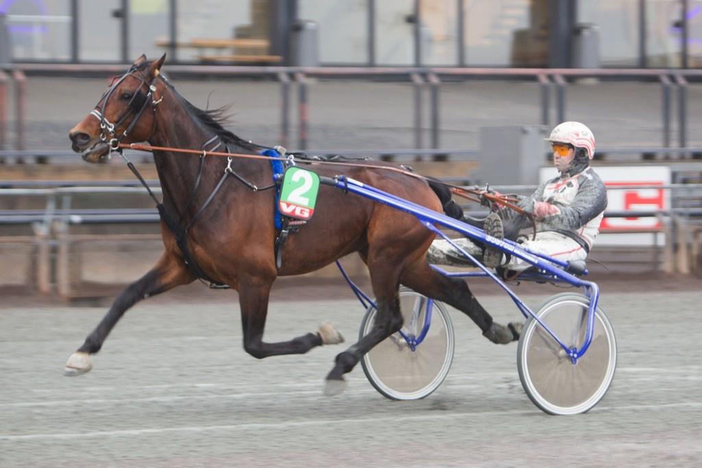Eirik Høitomt kjører vår banker lørdag. Foto: Anders Kongsrud/www.hesteguiden.com