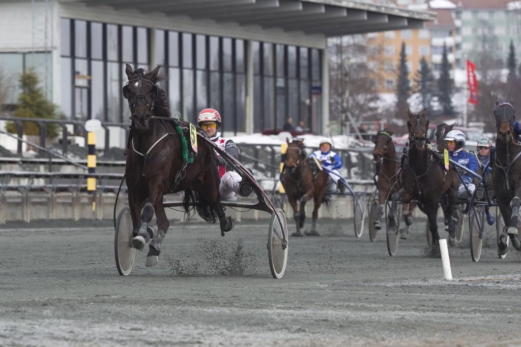 Mikael J Andersson kjører vår banker på søndag. foto_Roger Svalsr¿d_hesteguiden.com
