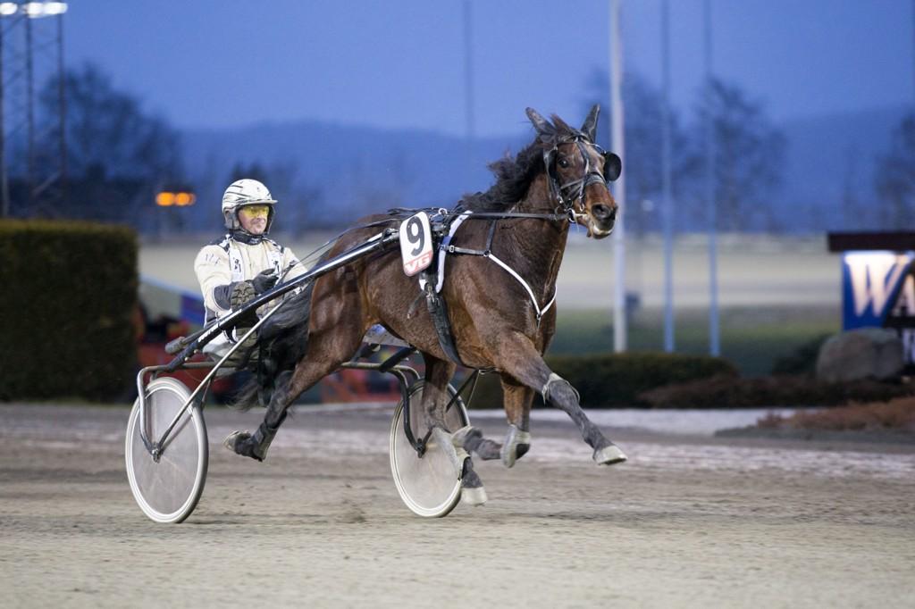 Exciter og Magnus Jakobsson starter i V64-4 på Mantorp. Foto: Roger Svalsrød: Hesteguiden.com