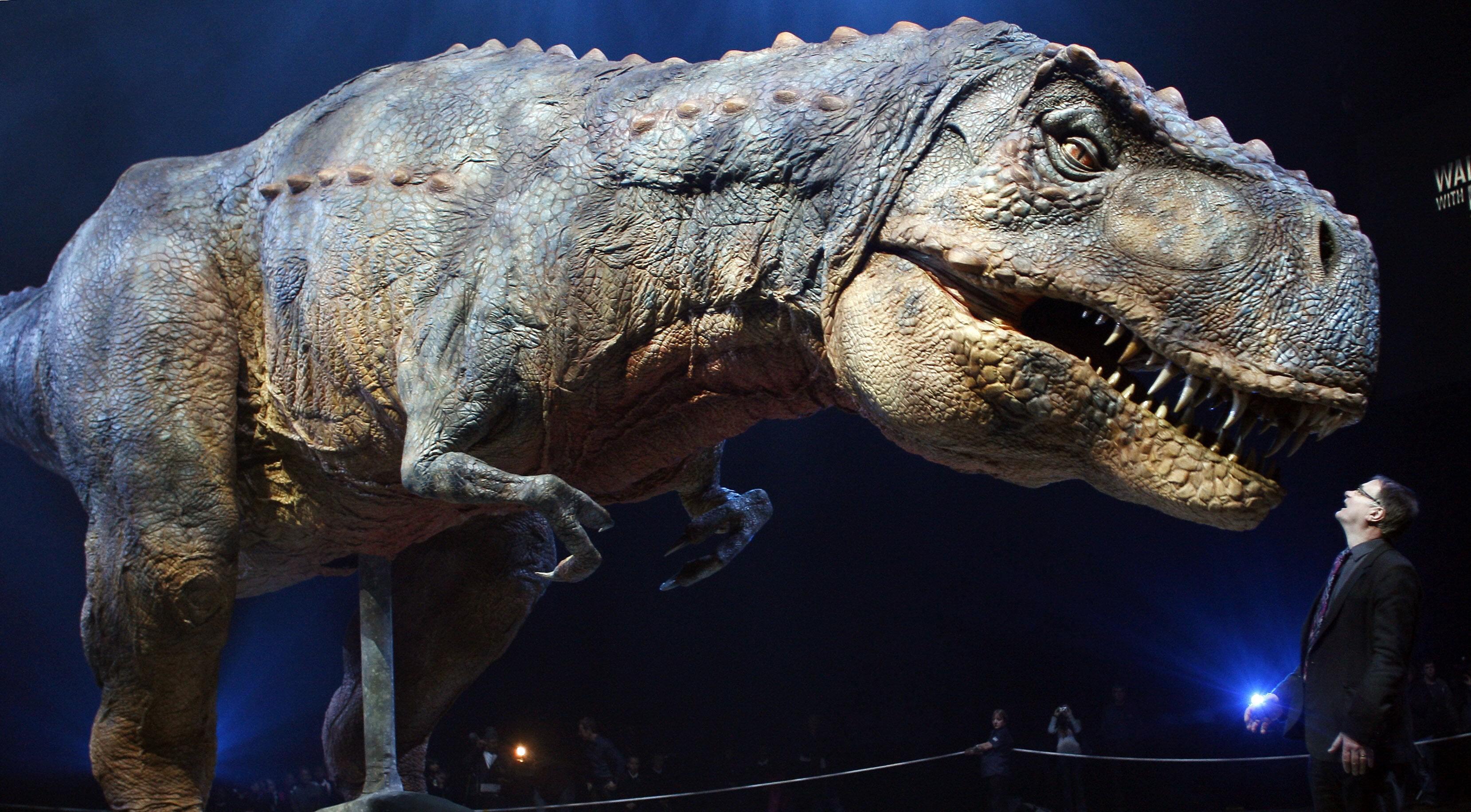 SÅ NOK ALDRI SLIK UT: Denne modellen av Tyrannosaurus rex er i tro størrelse, men paleontologer tror ikke lenger at T-rex så ut som dette. Isteden regner forskerne med at de aller fleste dinosaurer hadde fjær.