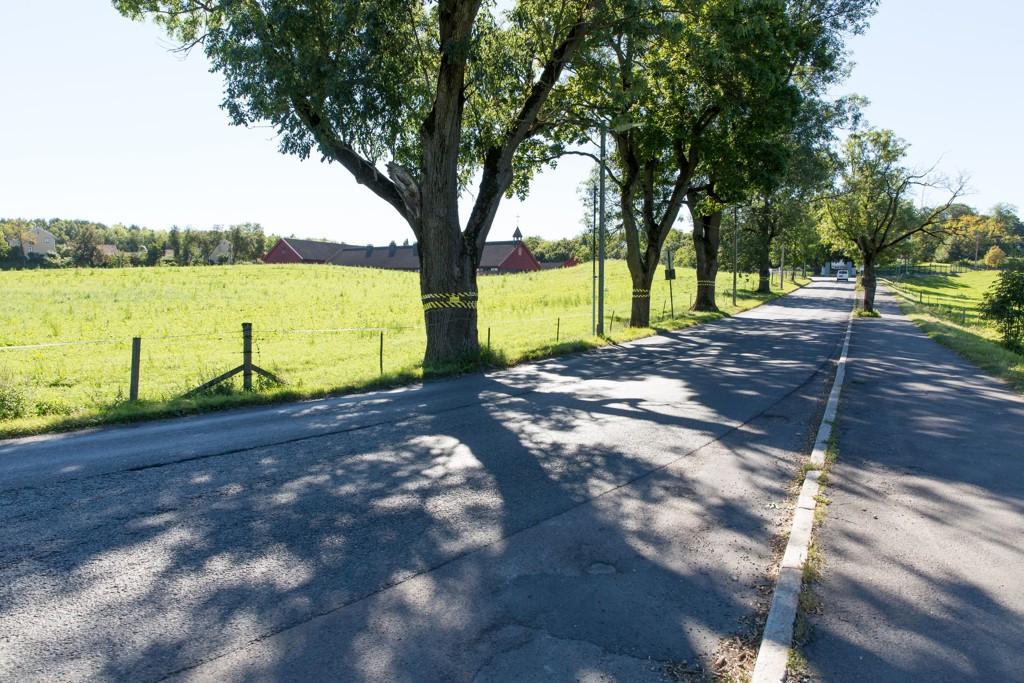 KONGEVEI: Her på Bygdøy i Oslo skal det bygges sykkelvei, fortau og bredere vei, noe Høyres bystyregruppe nå er blitt kritiske til. Partiet stemte selv for planene da de ble vedtatt for seks år siden.