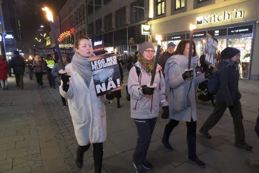 NOAHs Fakkeltog mot pels arrangeres for 13. gang i. Europas største markering for dyr. I hovedtoget holdes appeller av rikspolitikere og kjente kulturpersonligheter. Toget startet på Youngstorget i Oslo lørdag kveld.