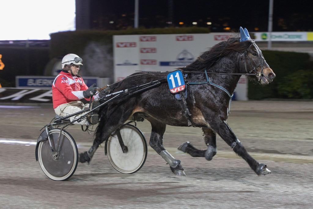 Vetle Petter og kusk Arnt-Sverre Røren. Søndag kommer de ut i V65-4. Foto: Anders Kongsrud/www.hesteguiden.com.