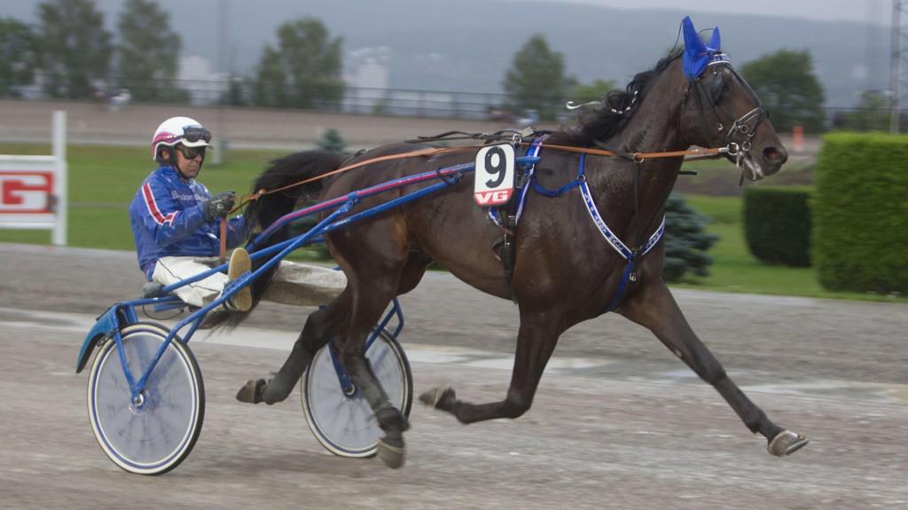 L.J.'s Andy Hall og Jomar Blekkan blir klare favoritter i V65-3 på Leangen i kveld. Foto: Anders Kongsrud/www.hesteguiden.com.