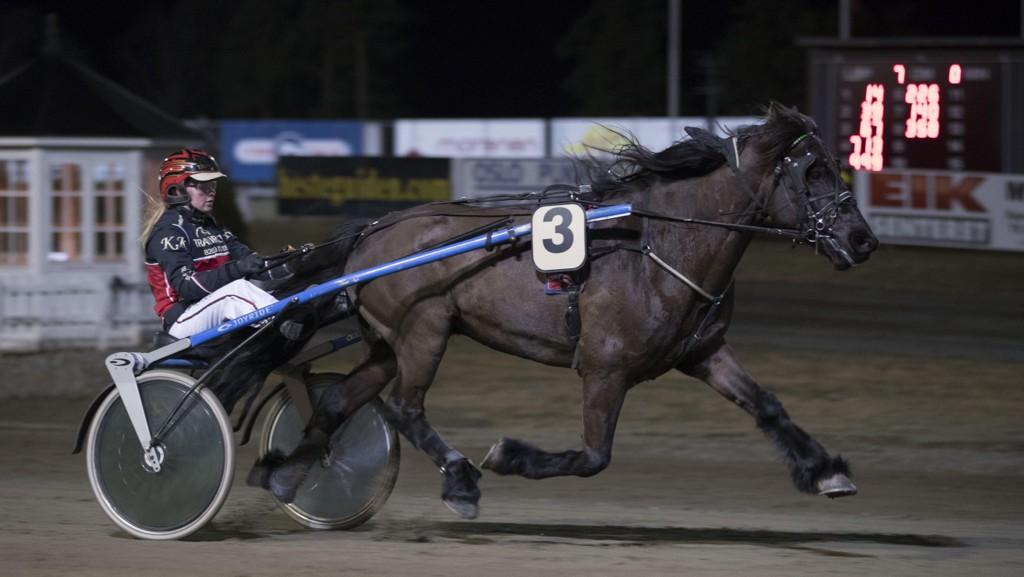 Grinder Gutten har imponert i to strake seiersløp for Kristine Kvasnes. Fredag blir ekvipasjen hardt betrodd i V65-3 på Biri. Foto: Roger Svalsrød: Hesteguiden.com