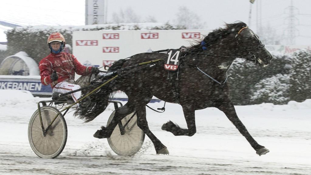 Ness Tjo Stjerna og Tom Erik Solberg blir store favoritter vant V75-5 på Bjerke lørdag. Foto: Morten Skifjeld/Hesteguiden.com