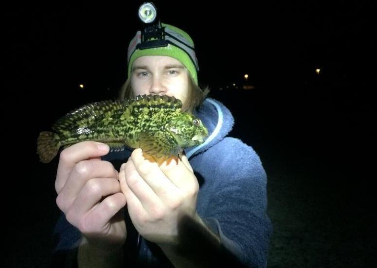 LITEN KJEMPE: Sebastian R. Pedersen med den enorme tangkvabben han dro opp i Rogaland natt til fredag.
