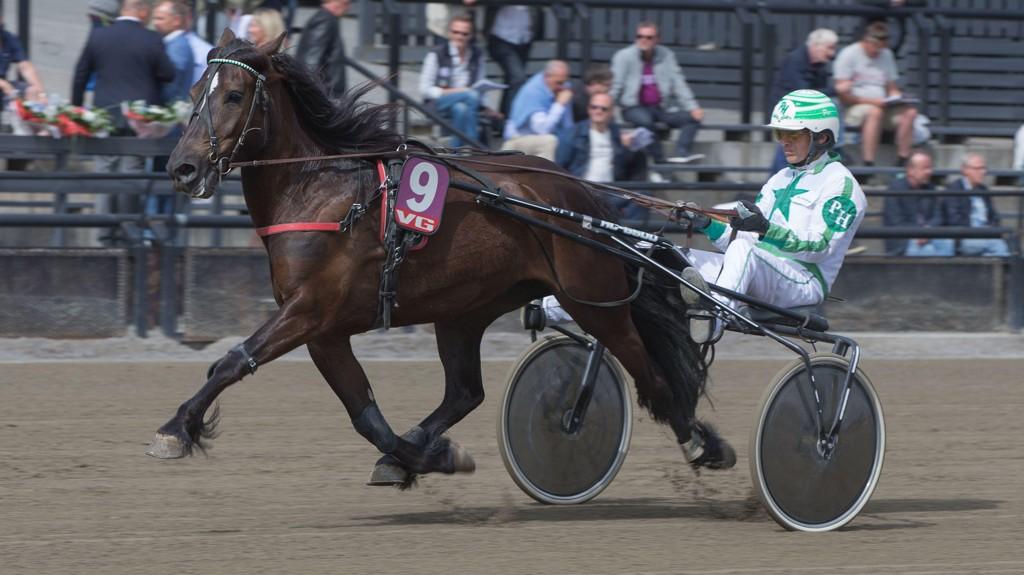 Hvatt Ronja og kusk Per M Hvattum. Mandag kommer de ut i V64-3. Foto: Anders Kongsrud/www.hesteguiden.com.