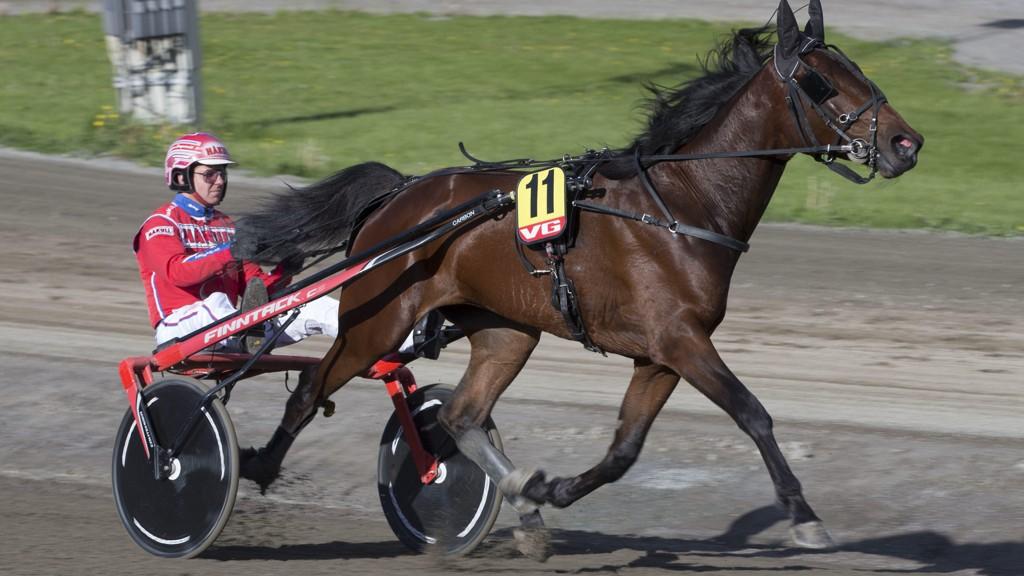 Amazing Dream og Åsbjørn Tengsareid blir klare favoritter i V5-3 på Bjerke tirsdag. Foto: Anders Kongsrud/www.hesteguiden.com.