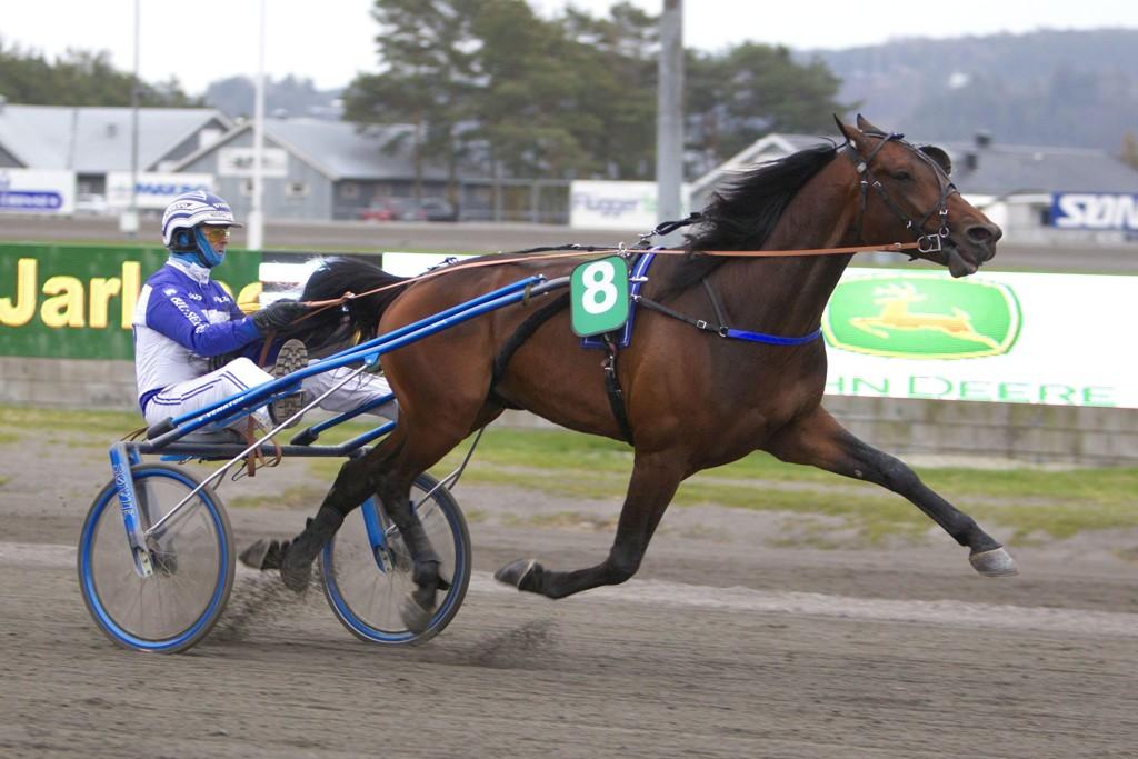 Vidar Hop og May Lucifer. Mandag kommer de ut i V5-4. Foto Morten Skifjeld/Hesteguiden.com