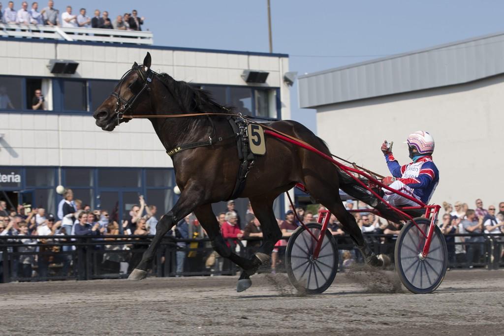Ferrari BR B.R. og kusk Per Oleg Midtfjeld. Lørdag kommer de ut i Drammen. Foto: Anders Kongsrud/www.hesteguiden.com.