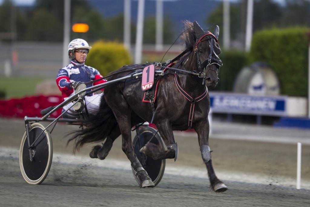 Ulf Eriksson er aktuell i dagens V64-omgang. foto_Roger Svalsr¿d_hesteguiden.com