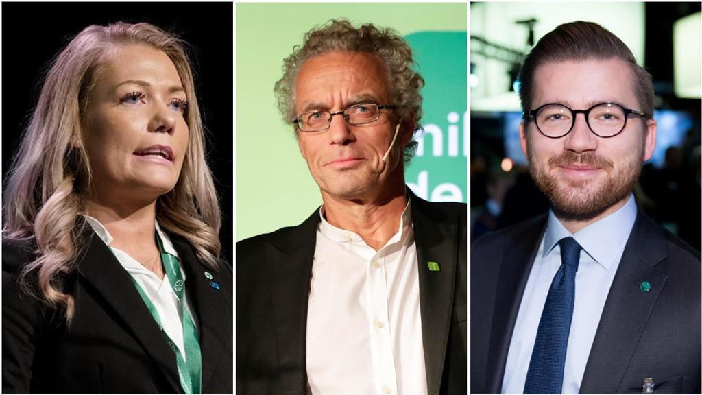 UTSKIFTNINGER: Sandra Borch kommer inn på Stortinget, mens Rasmus Hansson og Sveinung Rotevatn er blant dem som mister plassen på Stortinget.