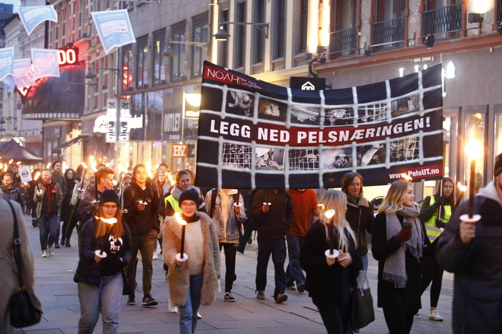 MOT PELS: NOAHs fakkeltog mot pels samlet flere hundre mennesker i Oslo lørdag. Toget går fra Youngstorget til Stortinget.