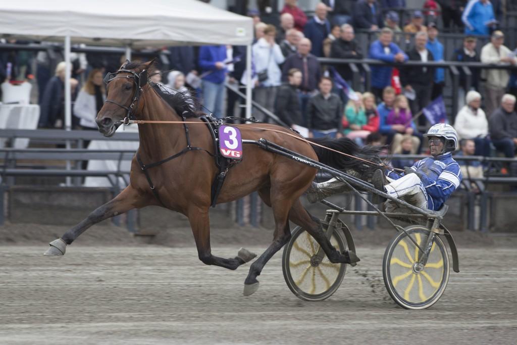 Erik Adielsson kjører vår banker på Solvalla søndag. Foto: Anders Kongsrud/www.hesteguiden.com.