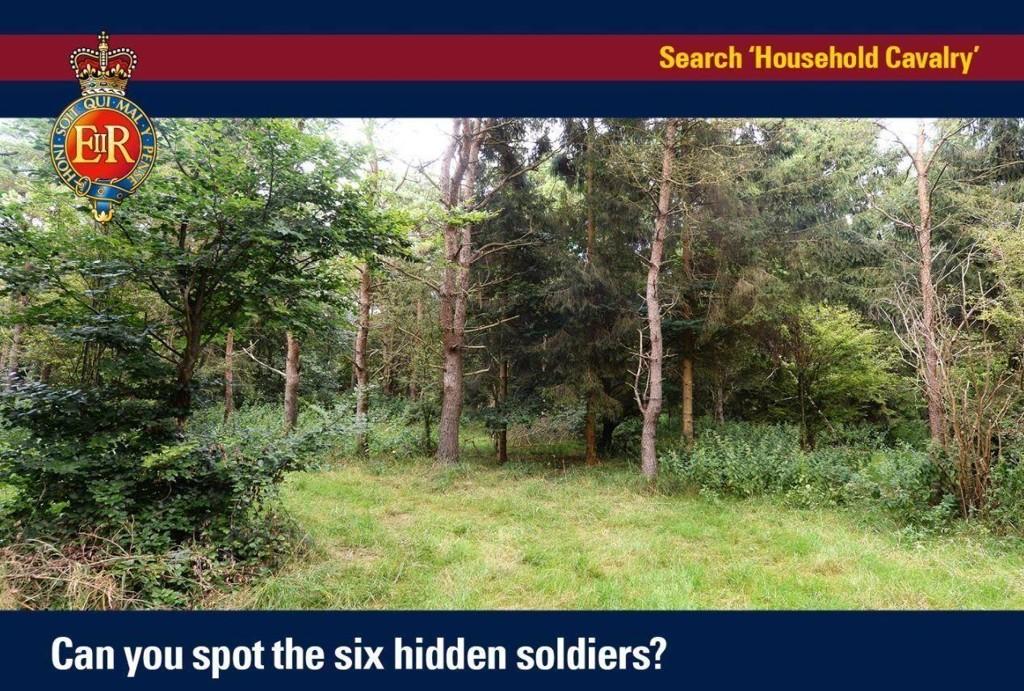 SOLDATER: Greier du å finne de seks soldatene som gjemmer seg på dette bildet?