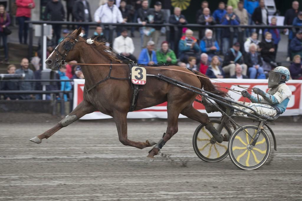 Örjan Kihlström er aktuell på Solvalla tirsdag. Foto: Anders Kongsrud/www.hesteguiden.com.
