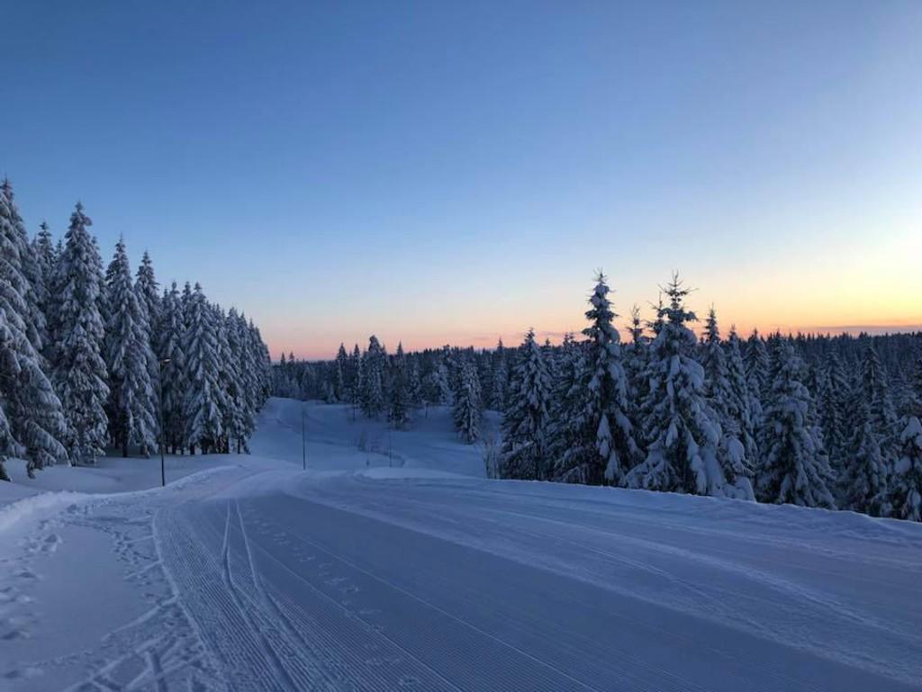 Frognerseteren tirsdag morgen. Her har det falt så mye snø at t-banen har måttet melde pass og bussene ta over.