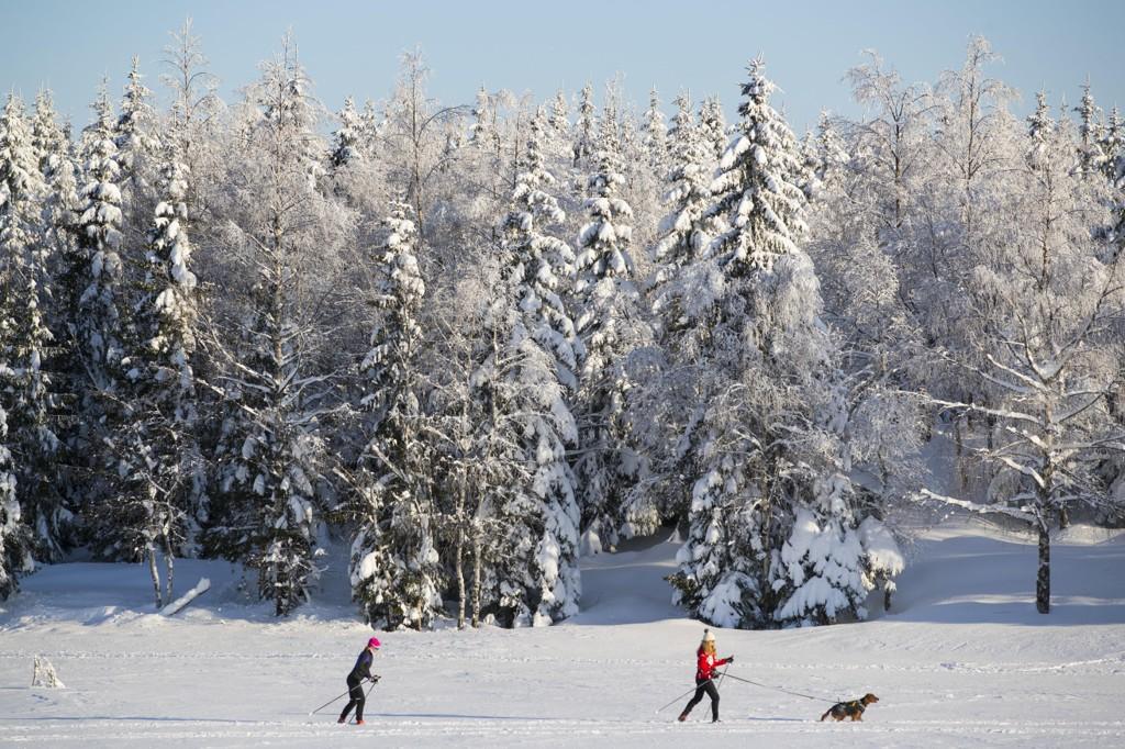 FIN SØNDAG? Østlandet innleder helgen med snø, men så ventes det å roe seg. Søndag blir det sannsynligvis opphold hele dagen.