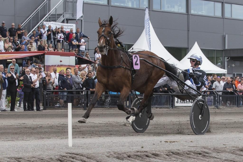 Christoffer Eriksson er aktuell i dagens V4-omgang. Foto Morten Skifjeld/Hesteguiden.com