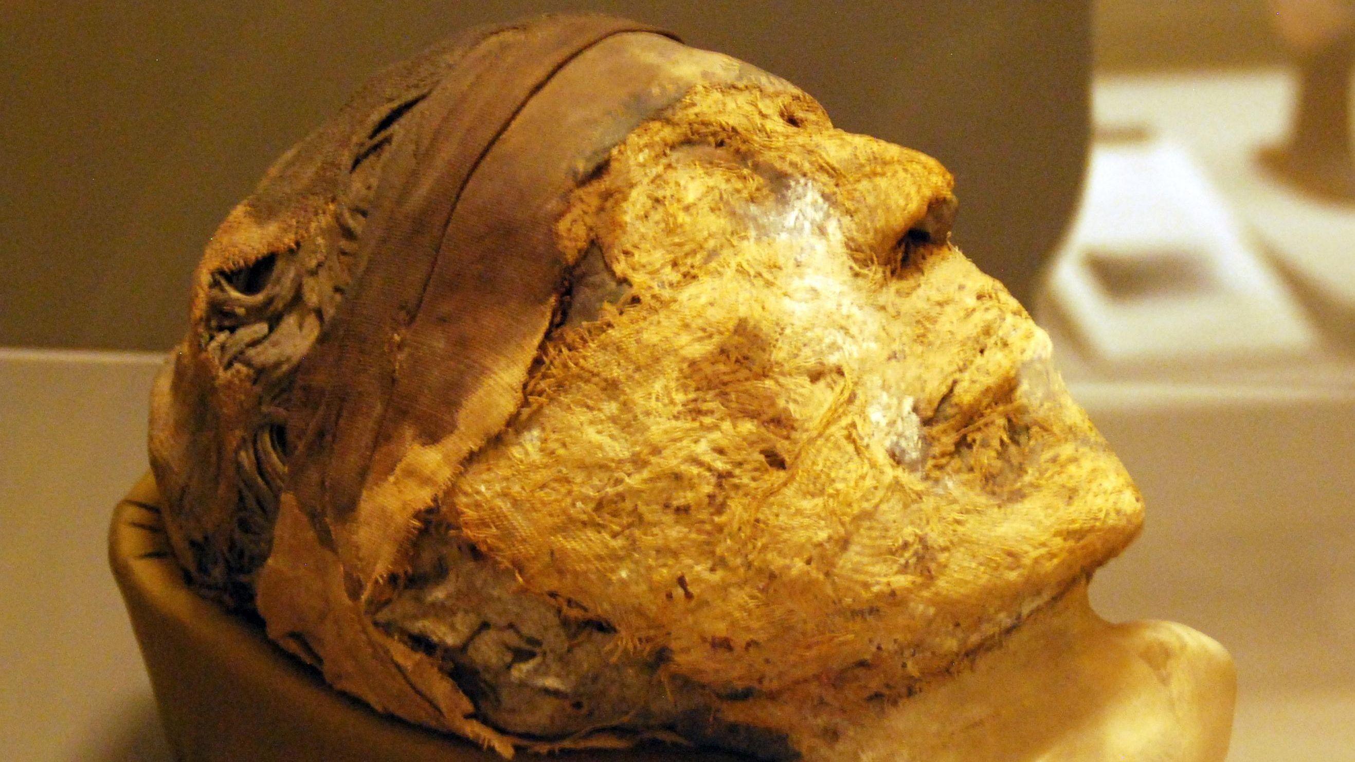 HAN ELLER HENNE? Det avkappede, mumifiserte hodet ble funnet i Egypts nekropolis Deir el-Bersha i 1915, men spørsmålet om nøyaktig hvem det tilhørte fikk sitt svar først i 2018 - av FBI ...