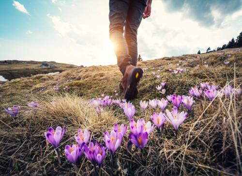 Det går an å nyte naturen og gå en fin tur, uten å legge ut bilde på Facebook.