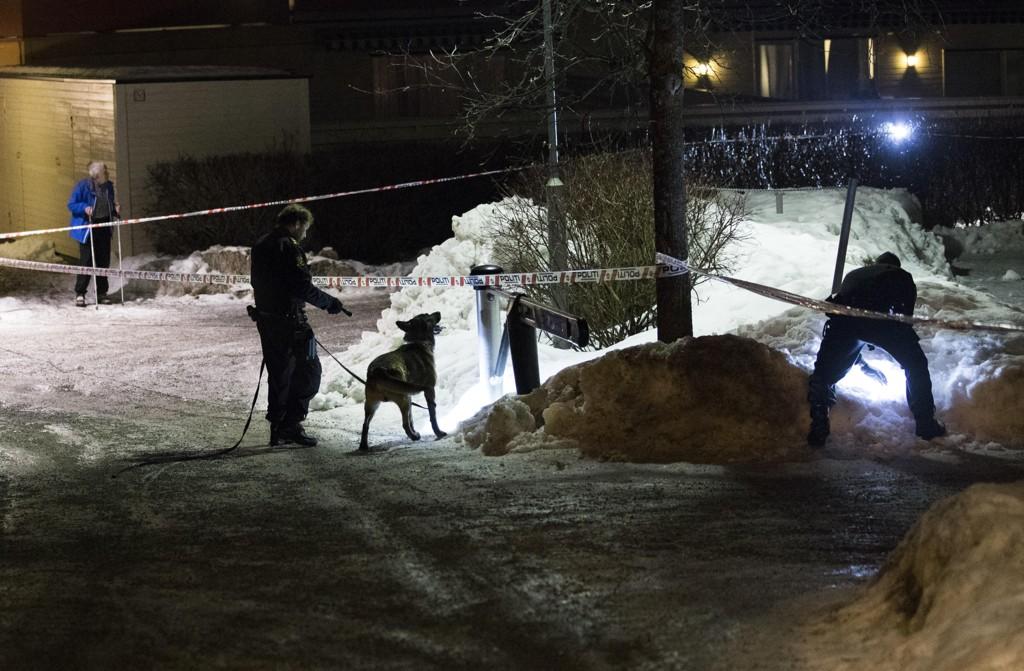 SKUDD: Politi med hunder søker i området der en person ble truffet av skudd på Holmlia sørøst i Oslo tirsdag denne uken.