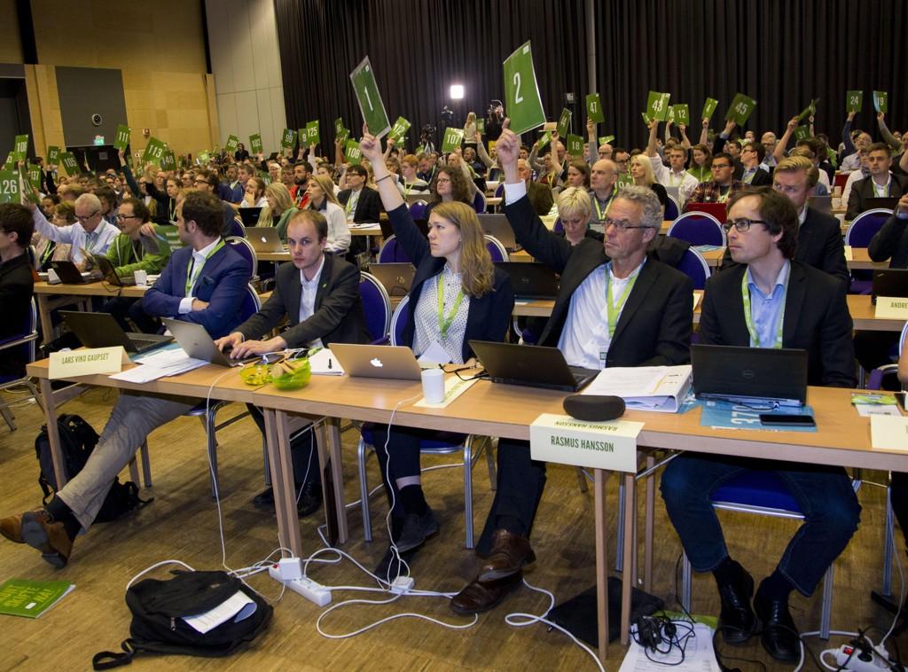 NYTT NAVN? MDG kan bytte navn i helgen. Her fra landsmøtet på Lillehammer i fjor.