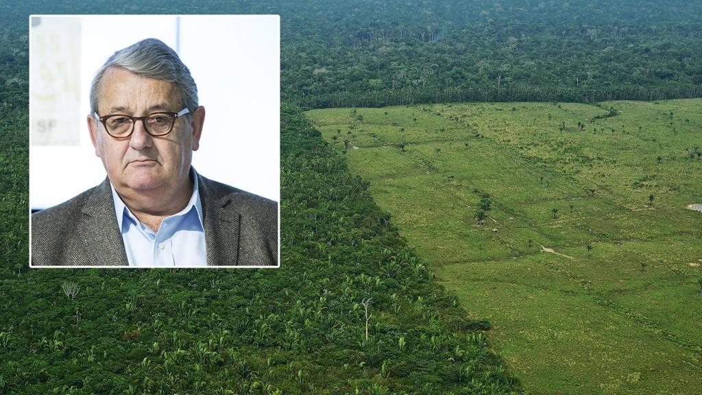 Riksrevisor Per Kristian Foss har sett på bruken av penger for å bremse avskoging av regnskog. Konklusjonen er knusende.
